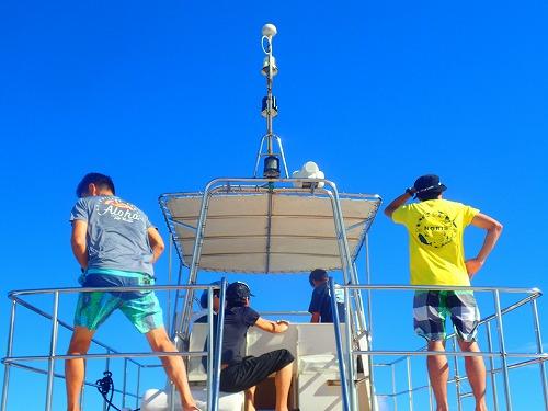 西表島の青い空