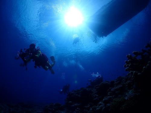 西表島の青い海