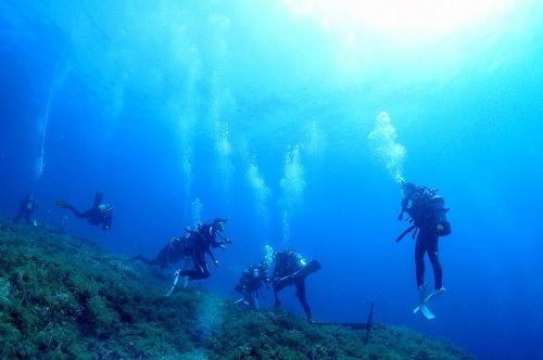 透明度の良い海