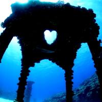 岡山【大型★与論島3泊4日】日本一の透き通った海でレッツダイブ!