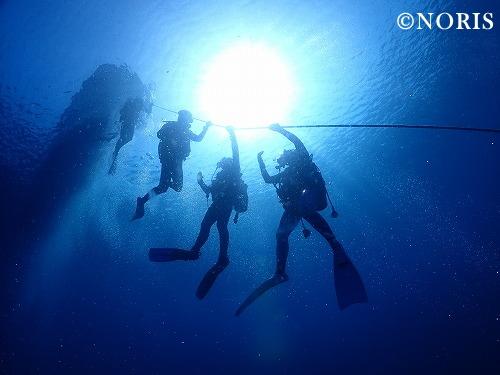ダイビングロープ潜降